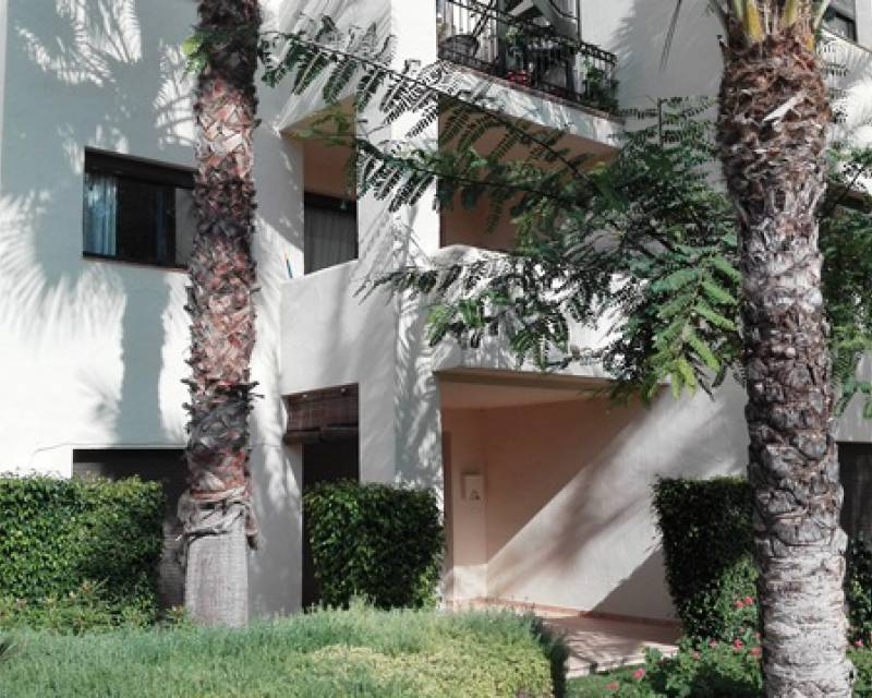 Apartment - Sale - Roda - Roda